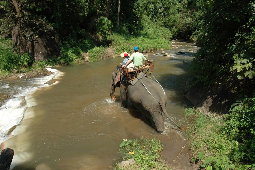 Province de Chiang Mai