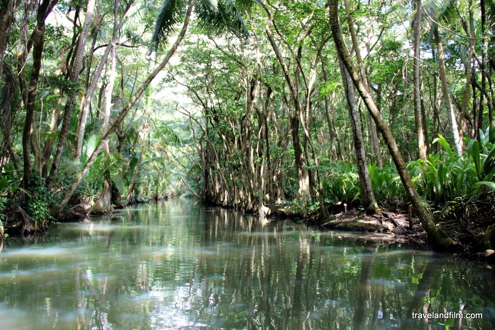 indian-river-dominique