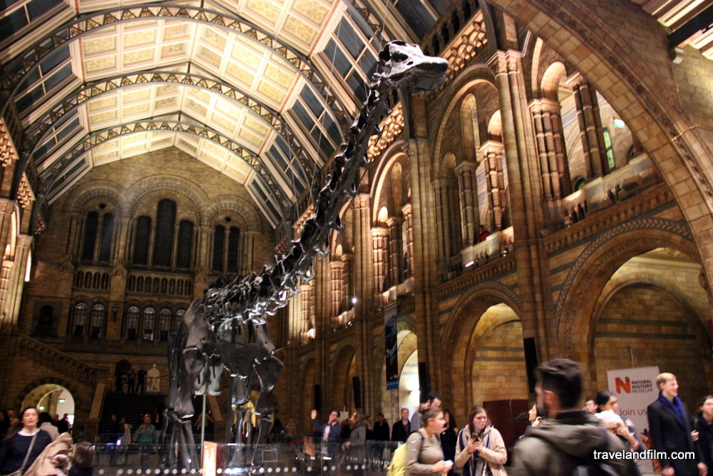 natural-history-museum-london-paddington