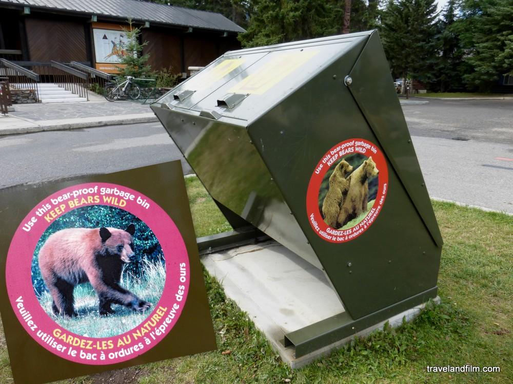 poubelle-bear-proof