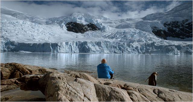 glace-et-ciel-lorius-pingouin