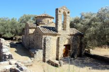 L'huile d'olive, secret de santé et beauté de la Grèce
