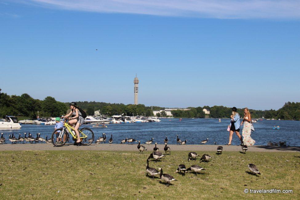 visiter-stockholm-venise-du-nord