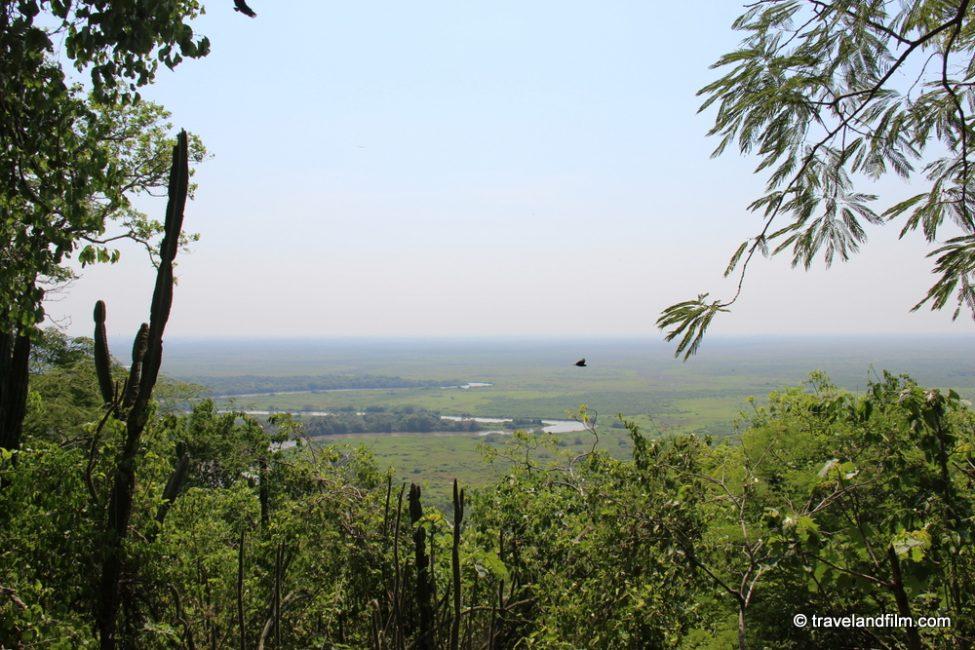 pantanal-vue-generale-mato-grosso-do-sul