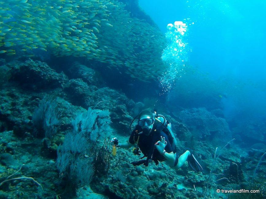 koh-phi-phi-diving