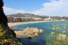 Coups de cœur en Catalogne: où aller selon vos envies