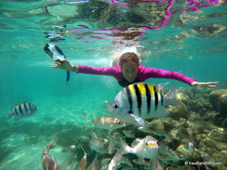 maracajau-coraux-bresil