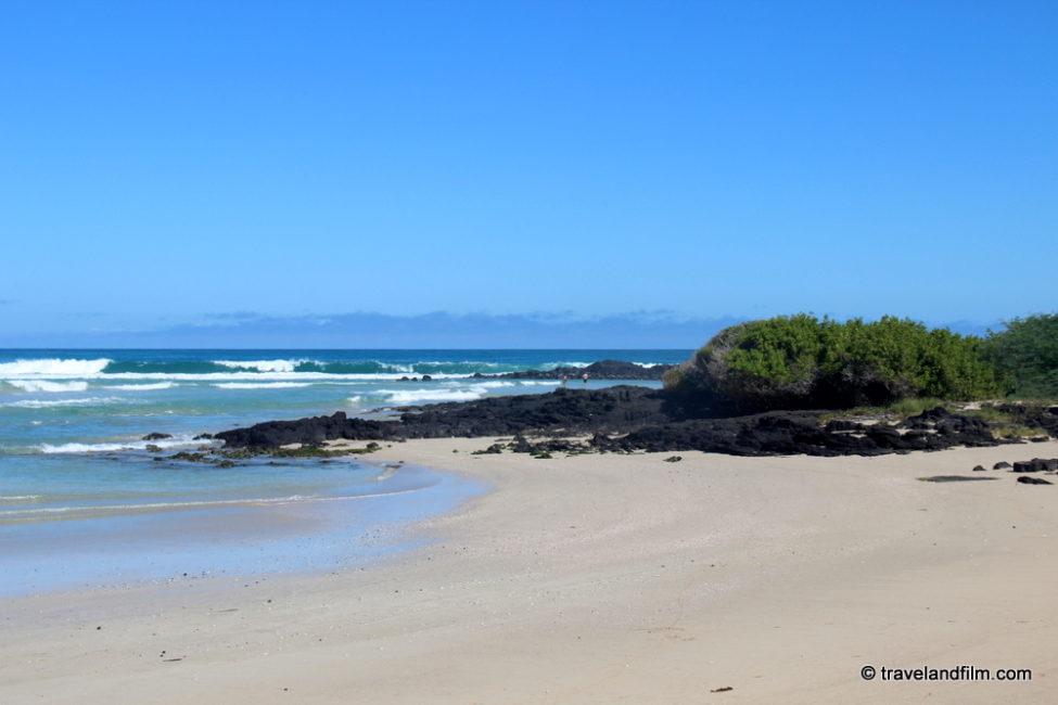 plage-parc-galapagos-isabela
