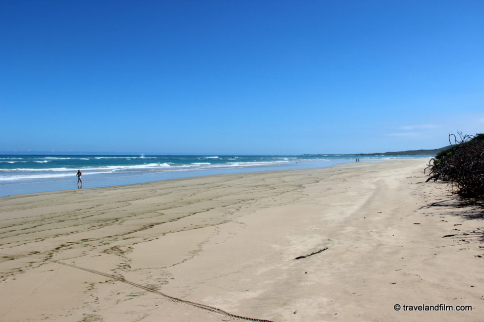 plage-puerto-villamil-isabela-galapagos