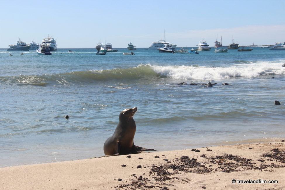 plage-san-cristobal-galapagos