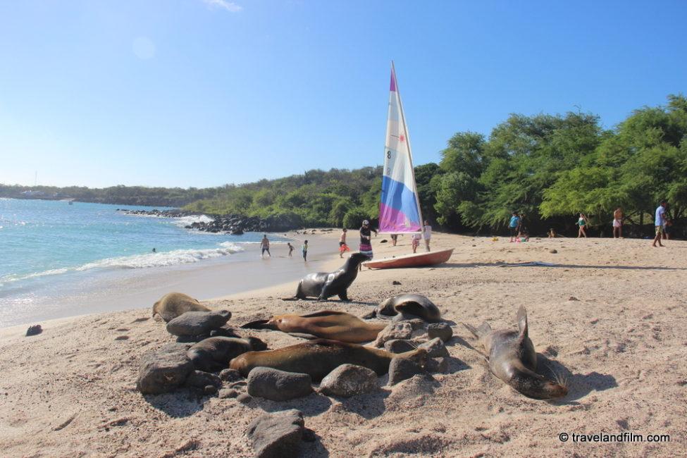 playa-mann-galapagos
