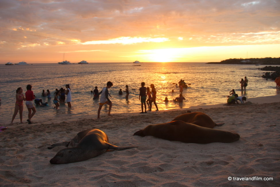 playa-mann-galapagos-sunset