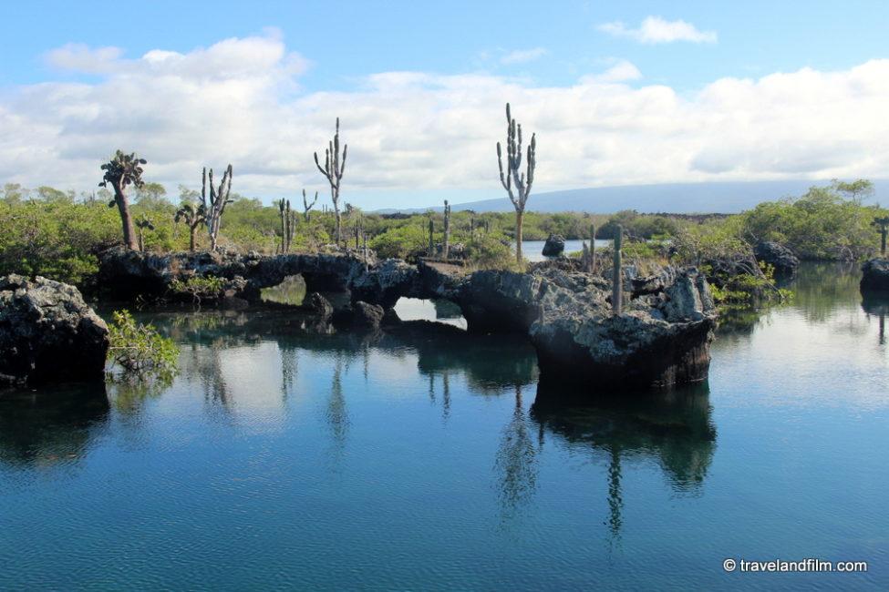 tuneles-tour-isabela-galapagos