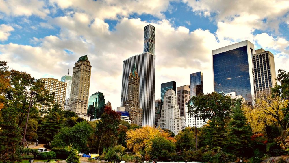 central-park-visiter-new-york