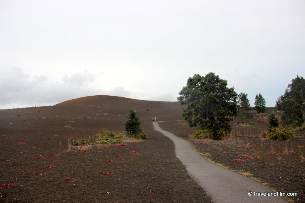 devastation-trail-volcano-national-park-big-island-hawaii
